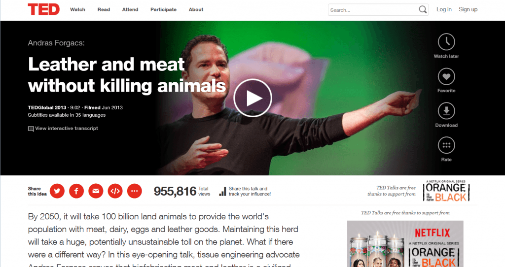 biofabricating meat