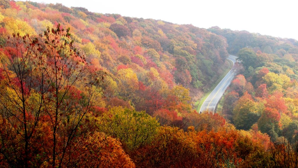 Cherohala-skyway-fall-nc1